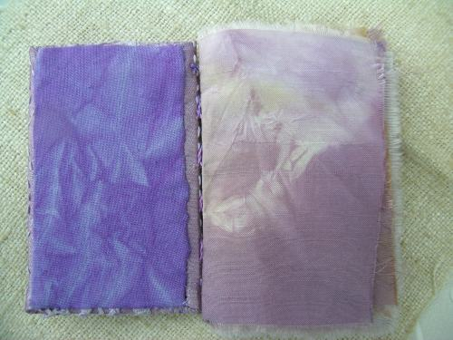 Finished red cabbage journal 5