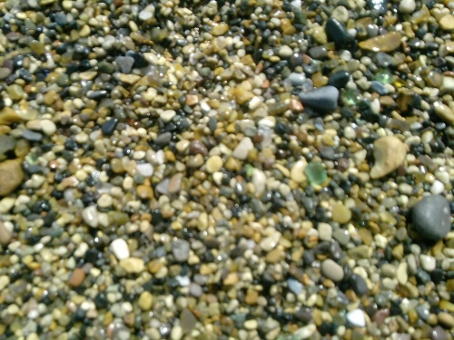 Seaham beach green glass