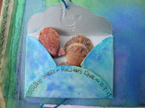 Hawker's Cove scallop shells 2