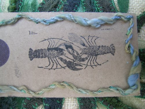Lobster Hatchery tag 2a