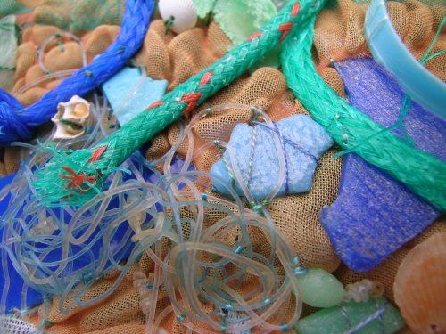 Beach debris 6