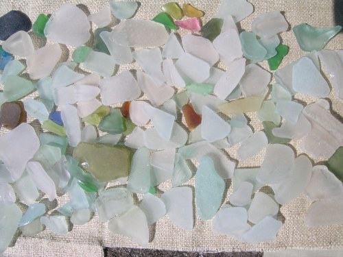 Polperro beachcombing 3