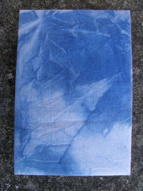 French link stitch indigo book 2